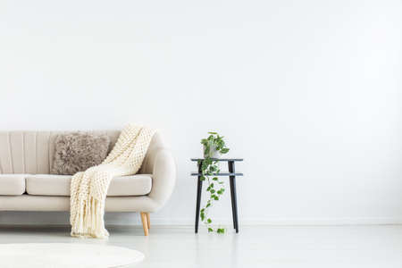 Bright blanket and pillow on a settee, next to a stool with plant in living room with copy space on the wall
