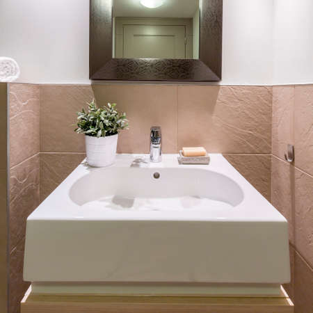 Small minimalist bathroom with elegant square sink, potted plant and mirror Stock Photo