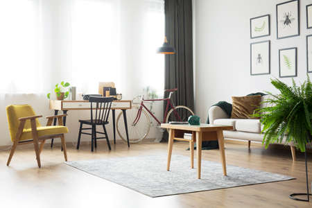 Wooden table on carpet and fern in living room with home office with retro armchair and bike