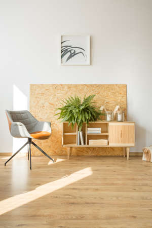 Retro chair next to a rustic cupboard with fern against a wall with poster in simple living room with wooden floor Stock Photo