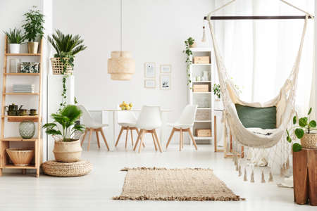 Brazilian chair hanging in white dining room interior with rug, potted plants and posters on the wall
