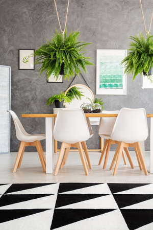 Cozy Dining Room Interior With An Elegant Dining Table And Fern Plants  Hanging Over The Table