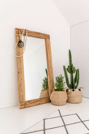 Potted plants standing next to big wooden mirror leaning against the white wall Фото со стока