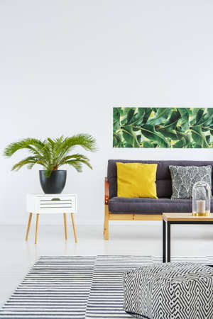 Plant in black pot on white cabinet next to sofa with pillows in bright living room interior with poster and patterned pouf on carpet