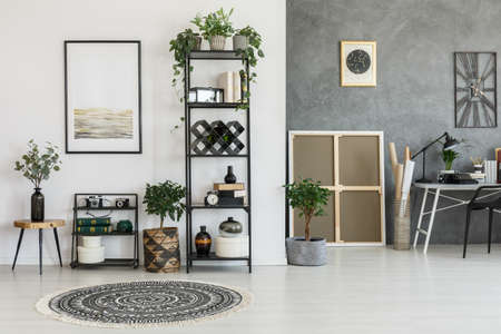 Patterned round carpet and plants on a shelf in living room with contrast color walls with poster 版權商用圖片