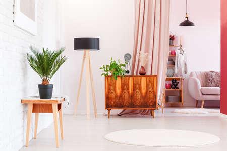 Plantar no tamborete de madeira e armário rústico no interior da sala de estar com tapete redondo branco e lâmpada perto de camarim