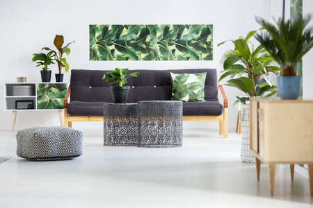 Pouf next to metal tables in front of dark sofa with green pillow in living room interior with plants on cupboards and poster on the wall Stock Photo