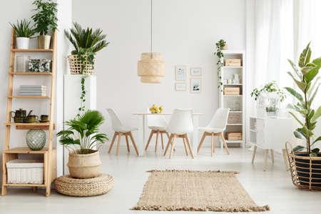 Pouf et tapis marron près d'un placard blanc dans un intérieur naturel avec chaises blanches, plantes et étagères en bois Banque d'images