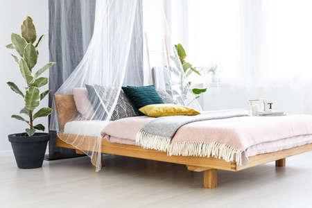 Koc, żółta poduszka i książki na drewnianym łóżku z welonem w pastelowym wnętrzu sypialni z drzewem figowym i świecą