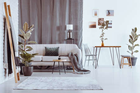 Ladder and plants in spacious apartment with sofa and dining table against white wall with photos Banque d'images