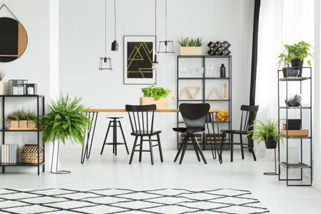 Ferns and patterned carpet in white spacious dining room with black chairs at table