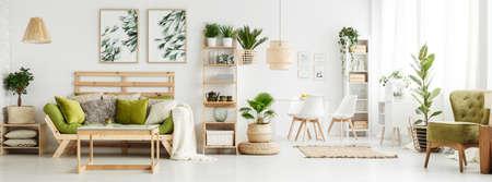 Deja carteles en la pared blanca sobre el sofá verde con almohadas y una manta en el amplio salón interior con plantas