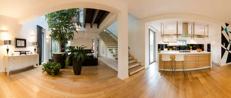 View of modern kitchen connected with spacious stylish living room. On the floor wooden parquet