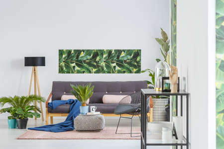 Blue blanket and pink pillows on black sofa near a lamp in living room interior with plants and green poster on white wall