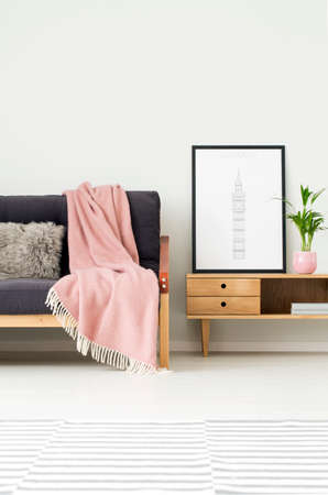 Plant and poster on rustic cupboard next to a dark sofa with grey pillow and pink blanket in cozy living room interior with patterned carpet