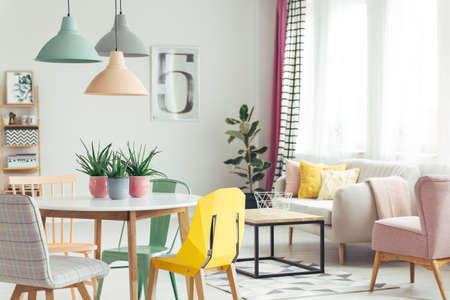 Aloe in pink pots on wooden table in pastel apartment interior with plant and armchair next to sofa with cushions Stockfoto