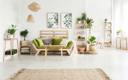 Brown rug in spacious floral living room interior with plants on shelf and green sofa next to table against wall with posters
