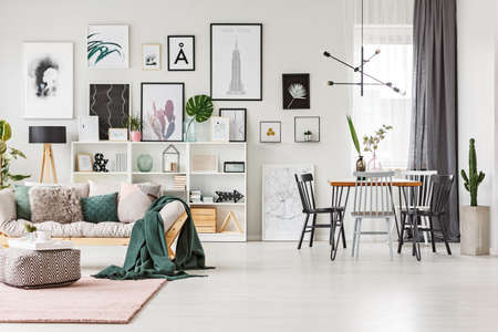 Chairs at dining table near a cactus in multifunctional interior with green blanket on the sofa and pouf on the rug