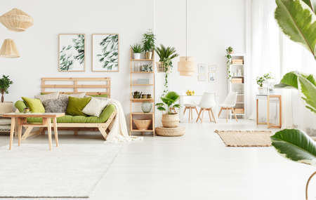 Plant on pouf next to shelves with kettle and vase in natural living room interior with table and green settee with pillows Foto de archivo