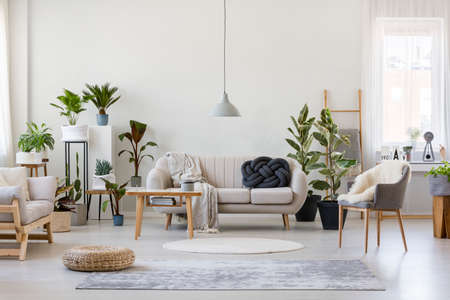 Pouf and gray armchair in spacious living room interior with plants and sofa near wooden table