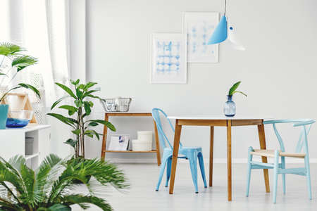 Leaves in vase on wooden table with blue chairs in dining room interior with plants and posters on white wall