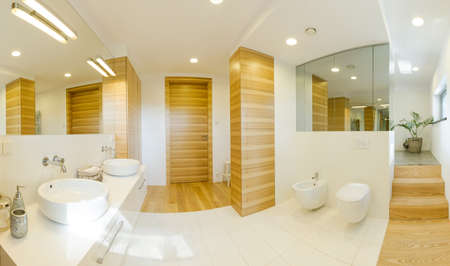 Combination of wood and white tiles in a modern bathroom with little stairs leading to the shower Reklamní fotografie
