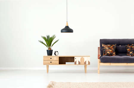 Black lamp above wooden cupboard with palm and clock next to dark sofa in living room interior with carpet