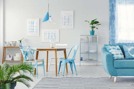 Blue chairs at dining table against white wall with gallery in flat interior with plants and sofa on patterned carpet Zdjęcie Seryjne