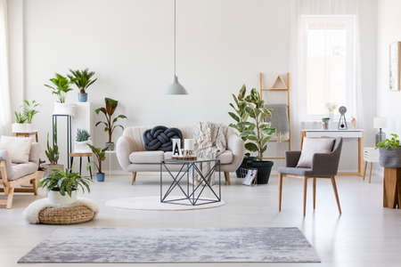 Gray rug, pouf and armchair in spacious floral living room interior with beige settee near dark table Stock Photo