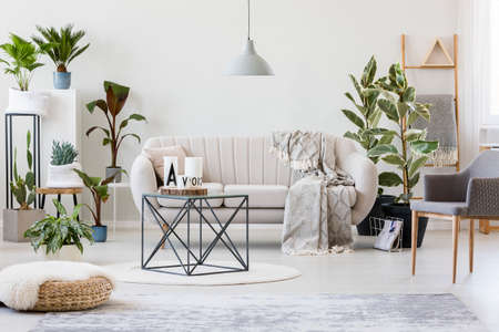 Pouf and grey armchair in botanic living room interior with beige sofa near plants and table on rug