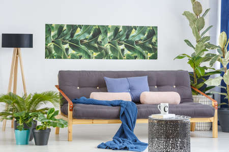 Blue blanket and pillows on wooden couch in cozy living room interior with plants and leaves poster Stock Photo