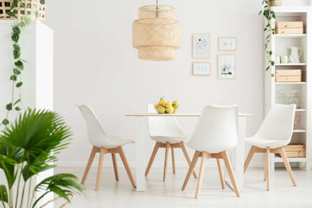 Simple dining room interior with palm and ivy plants, white chairs and bowl of lemons on the table