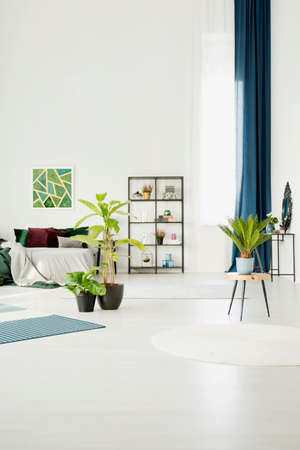 Palm on wooden stool next to ficus in spacious bedroom interior with green poster on white wall above bed