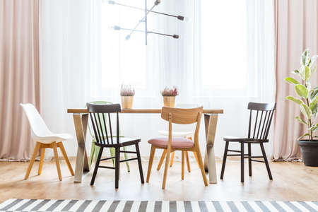 Wooden chairs at table with heathers in bright pastel dining room interior with drapes and ficus