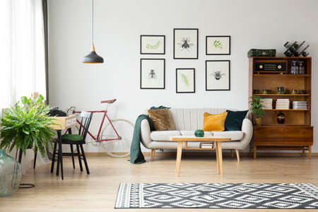 Patterned rug and fern in bright vintage living room interior with sideboard and posters above sofa