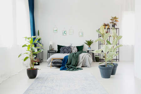 Ficus in floral bedroom interior with green blanket and knot pillows on bed against a wall with posters