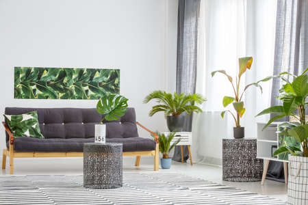 Black, wooden sofa surrounded by green plants in a living room interior