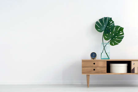Monstera leaves in glass vase on wooden cupboard against white wall with copy space in empty room interior Stockfoto