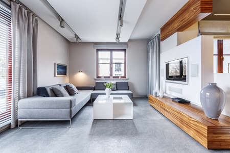 Vase on long wooden, cupboard in modern, grey living room interior with corner sofa and white table