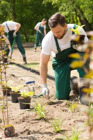 Young team of gardeners working on park flowerbeds Reklamní fotografie