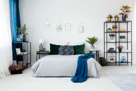 Blue blanket on bed between nightstands with lamp and plant in bedroom interior with pictures