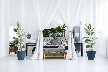 Double bed with white canopy surrounded by plants in spacious, modern bedroom interior