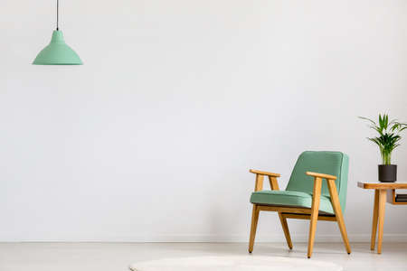 Mint, wooden armchair standing next to a cropped table with a plant in an empty living room interior