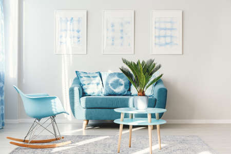 Palm on light blue, round table standing next to a rocking chair and sofa in bright living room interior Standard-Bild - 97183129