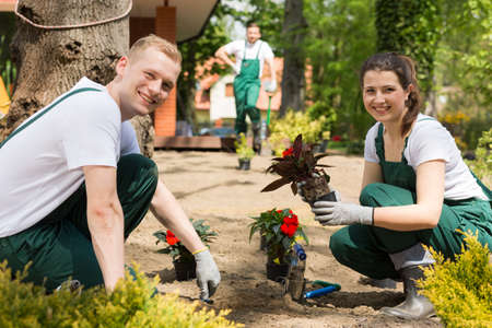 Two enthusiastic gardeners planting flowers on a sunny day Stock Photo