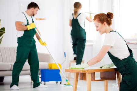 Cleaning crew washing furniture using professional equipment Foto de archivo