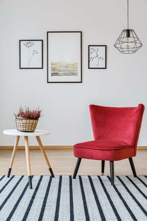 Red armchair next to a wooden table with heather on striped carpet in living room interior with posters Фото со стока - 97547265