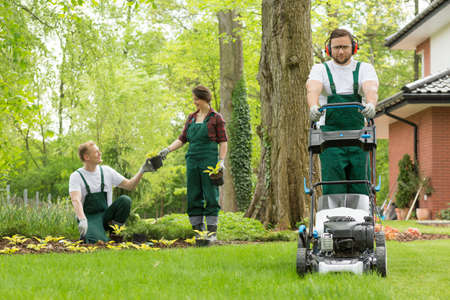 Optimistic team of gardeners planting flowers and mowing lawn Stock fotó