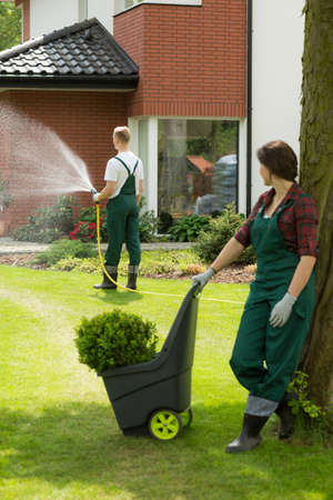 Pair of gardeners maintaining a garden, the man watering flowers Stock Photo