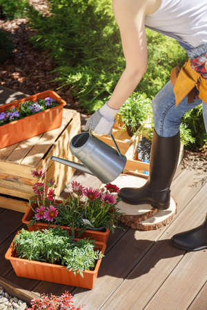Woman using metal watering can to water flowers on a wooden terrace